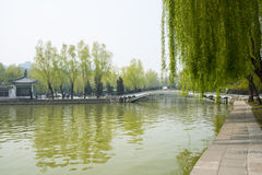 Asia China, Beijing, Youth Lake Park,spring scenery Stock Photography