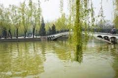 Asia China, Beijing, Youth Lake Park,spring scenery Royalty Free Stock Image