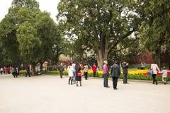 Asia China, Beijing, Zhongshan Park,The gardening landscape Stock Photos