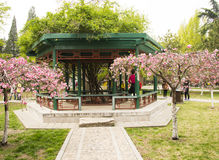 Asia China, Beijing, Zhongshan Park,The pavilion and garden flowers Royalty Free Stock Photos