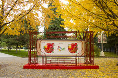 Asia China, Beijing, Zhongshan Park,The propaganda board, ginkgo tree Royalty Free Stock Photography