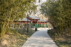 Asia China, Beijing, Zizhuyuan Park, Landscape architecture, Pavilion, Gallery,green bamboo Stock Photo