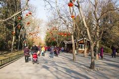 Asia China, Beijing, Zizhuyuan Park, Winter landscape Royalty Free Stock Photography