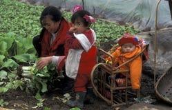 ASIA CHINA EL RÍO YANGZI Foto de archivo