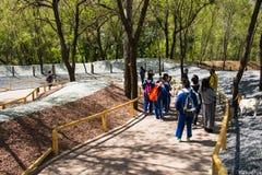 Asia China, Pekín, Daxing, parque animal salvaje, ¼ Œ de Landscapeï del parque Imagen de archivo