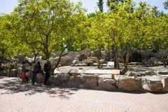 Asia China, Pekín, Daxing, parque animal salvaje, ¼ Œ de Landscapeï del parque Fotos de archivo