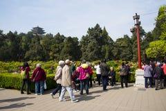 Asia China, Pekín, parque de la colina de Jingshan, festival de ŒPeony del ¼ del landscapeï del jardín de la primavera Imagen de archivo libre de regalías