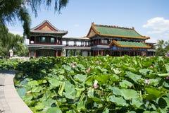 Asia China, Pekín, parque del lago Longtan, charca de loto y edificio de la antigüedad Foto de archivo libre de regalías