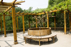 Asia Chinese, Beijing, North Palace, Forest Park, Landscape architecture, wood Pavilion, circular rest chair. Asia China, Beijing, Forest Park,, national stock photos