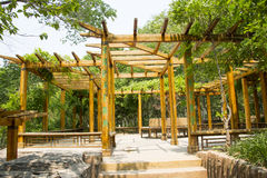 Asia Chinese, Beijing, North Palace, Forest Park, Landscape architecture, wood Pavilion. Asia China, Beijing, Forest Park,, national Forest Park, Sononai Yu royalty free stock image
