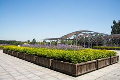 Asia Chinese, Beijing, Olympic Forest Park, flower beds, Pavilion Royalty Free Stock Photography