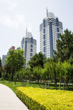 Asia Chinese, Beijing, Park,modern building. Asia China, Beijing, Madian park green, the surrounding modern buildings stock photo