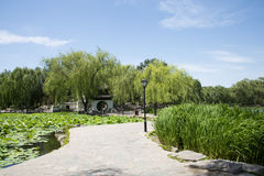 Asia Chinese, Beijing, Taoranting  Park,Garden scenery. Asia China, Beijing, Taoranting Park, modern gardens, beautiful scenery, ancient buildings Stock Photos