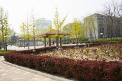 Asia Chinese, Beijing, yong xi Park, leisure city street Royalty Free Stock Photography