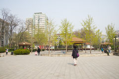 Asia Chinese, Beijing, yong xi Park, leisure city street Royalty Free Stock Photos