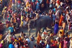 asia duży bydła jarmark s zdjęcie royalty free