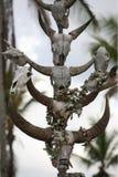 ASIA EAST TIMOR TIMOR LESTE RACA GRAVEYARD Royalty Free Stock Image