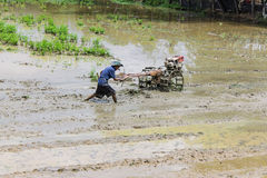 Asia Farmer using tiller tractor in rice field Stock Photo