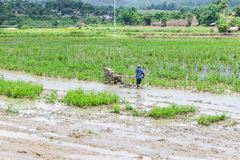 Asia Farmer using tiller tractor in rice field Royalty Free Stock Photo