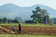 Asia farming. Two farmers plough the field ,prepare field for planting in a beautiful farm royalty free stock photos