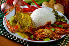 Asia food and rice Royalty Free Stock Images