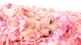 Asia girl in flower. An asia girl in pink flowers royalty free stock images