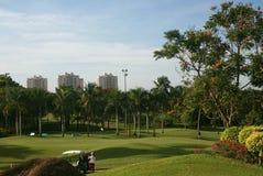 asia golf Fotografering för Bildbyråer