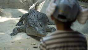 Asia grande Cocrodile con la niña en parque zoológico fotografía de archivo