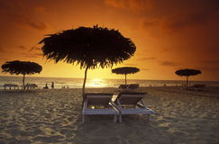 ASIA INDIA GOA. The beach of Anjuna in the Province Goa in India Stock Images