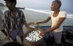 ASIA INDIA GOA Stock Image