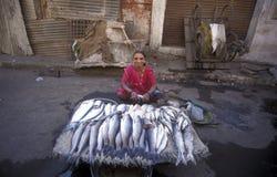 ASIA INDIA GUJARAT Royalty Free Stock Photography