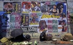 ASIA INDIA RAJASTHAN Stock Image