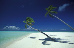 ASIA INDIAN OCEAN MALDIVES SEASCAPE BEACH Stock Images