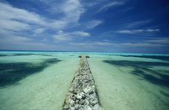 ASIA INDIAN OCEAN MALDIVES SEASCAPE BEACH Royalty Free Stock Images
