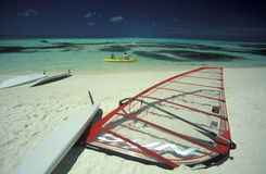 ASIA INDIAN OCEAN MALDIVES SURFING Royalty Free Stock Image