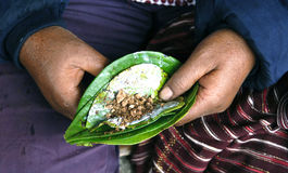 Asia Indonesia betel preparation Royalty Free Stock Image
