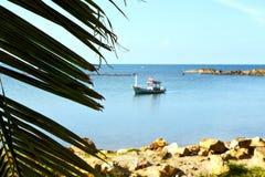 Asia   kho phangan     beach    rocks  palm and south china sea Royalty Free Stock Photos