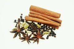 asia kryddor Arkivbilder