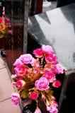 asia kyrkogård Arkivbilder