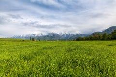 Asia landscape. Kyrgyzstan, Baitik Stock Images