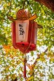Asia lantern Royalty Free Stock Photography