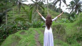 asia lopp Kvinnan i lång klänning som går nära ris, terrasserar och lyfter händer lager videofilmer