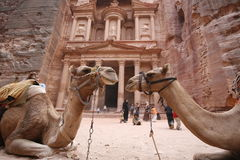 ASIA MIDDLE EAST JORDAN PETRA. The Al Khazneh Treasury in the Temple city of Petra in Jordan in the middle east Stock Photo