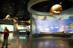 Asia museo de China, Tianjin de la historia natural, escena biológica marina fotos de archivo libres de regalías
