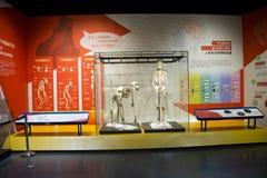 Asia museo de China, Tianjin de la historia natural, esquelético fotos de archivo libres de regalías