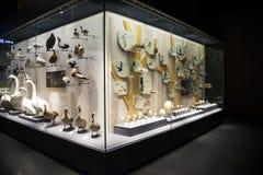 Asia museo de China, Tianjin de la historia natural, exhibición de la ventana fotos de archivo