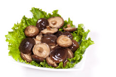 Asia Mushrooms Stock Image