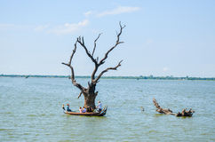 Asia, Myanmar Burma: Boat ride near U Bein Bridge of Mandalay Royalty Free Stock Photos
