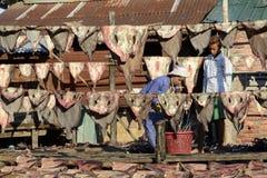 ASIA MYANMAR MYEIK DRY FISH PRODUCTION Stock Image