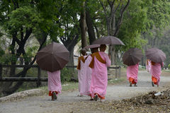 ASIA MYANMAR NYAUNGSHWE NUN Royalty Free Stock Photos